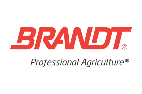 Brandt Depoimento